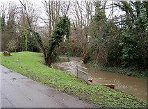 TQ0682 : River Pinn after winter rain by Rob Emms