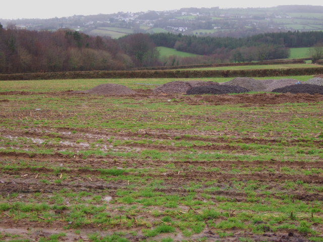 Tracks across the field