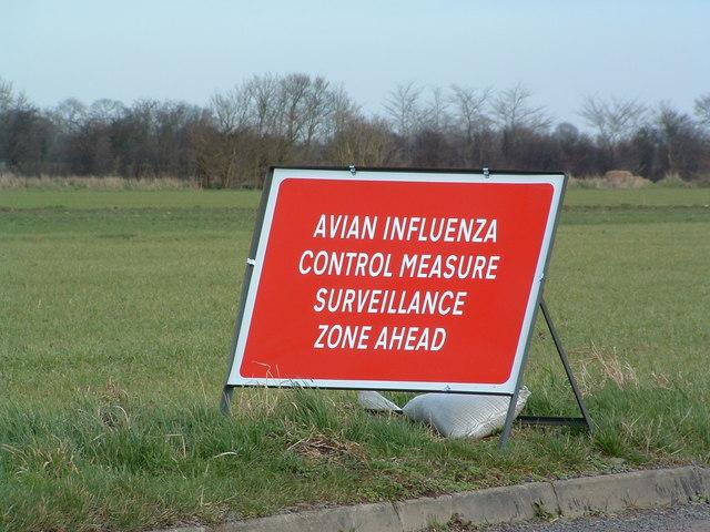Avian Influenza (Bird Flu) Sign