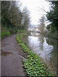 ST7565 : The Kennet and Avon canal, Bath by Roger Cornfoot