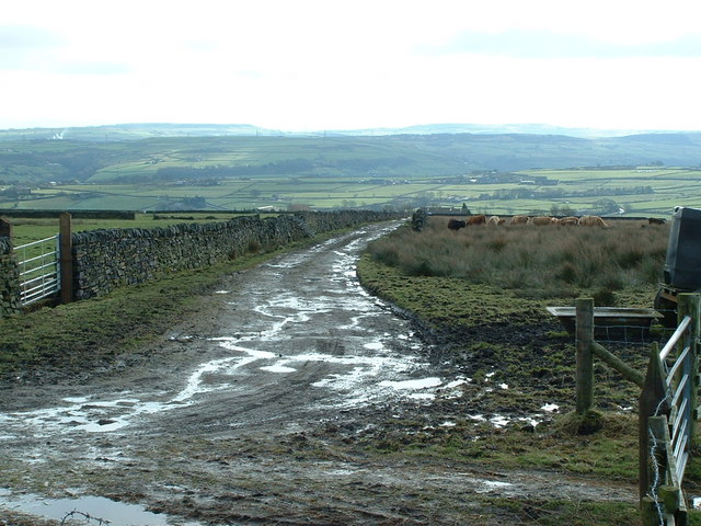 The Calderdale Way towards Greave Road