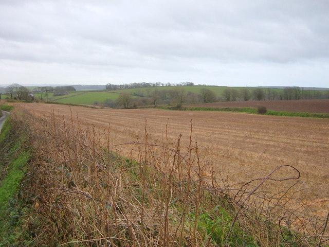 Fields adjacent to Wilton Farm