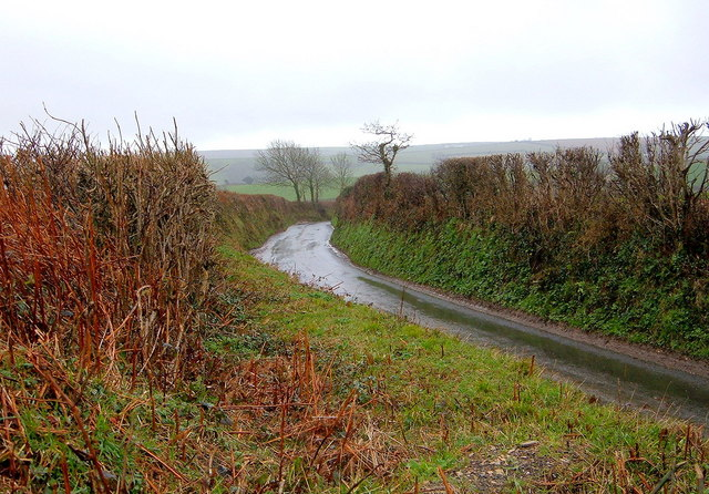 Wet Single Track Road leading down to A387