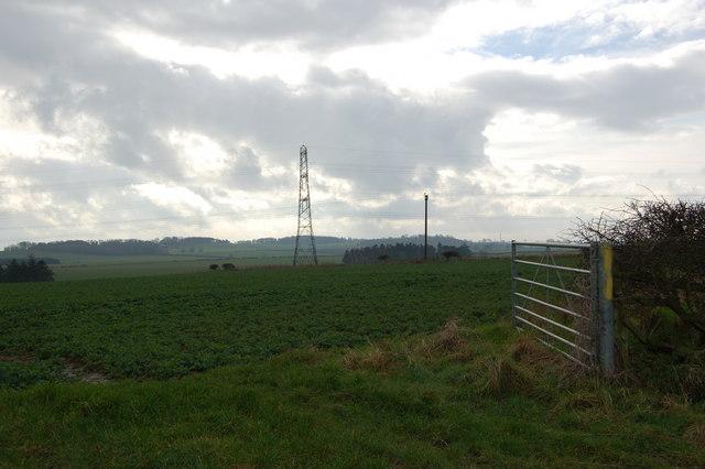 Pylons near Laker Hall