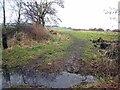 NZ2239 : Field beside Scripton Gill by Oliver Dixon