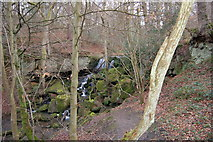 NZ1455 : Waterfall in Collierley wood - Pont burn by P Glenwright