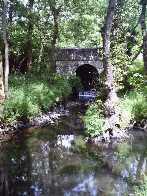 The Wooleigh Brook.