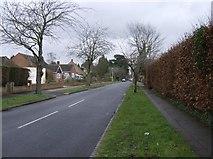 SU7075 : Richmond Road by Graham Horn