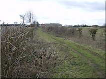 SU6878 : Footpath to Hodmore Farm by Graham Horn