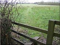 SU6879 : Footpath near Cane End by Graham Horn