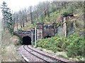NS2071 : Inverkip Railway Tunnels by Thomas Nugent