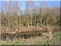 SJ4252 : Peaceful Bend in the River Dee by John S Turner