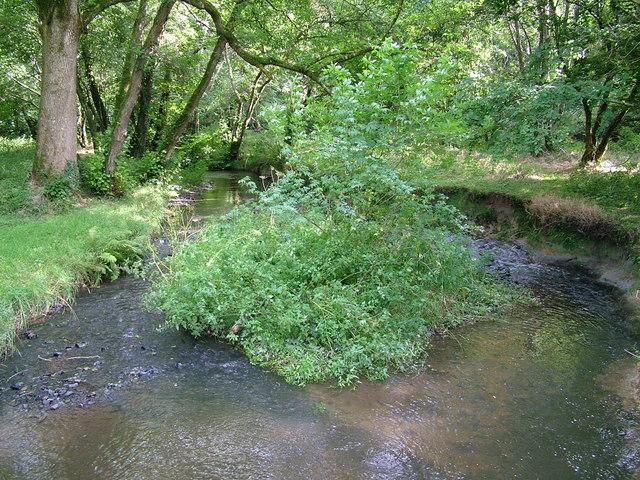 Wooleigh Brook, Devon