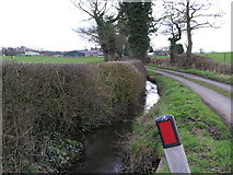 SJ9928 : Moorleys Lane and stream with Amerton Farm in the Distance by Jack Barber