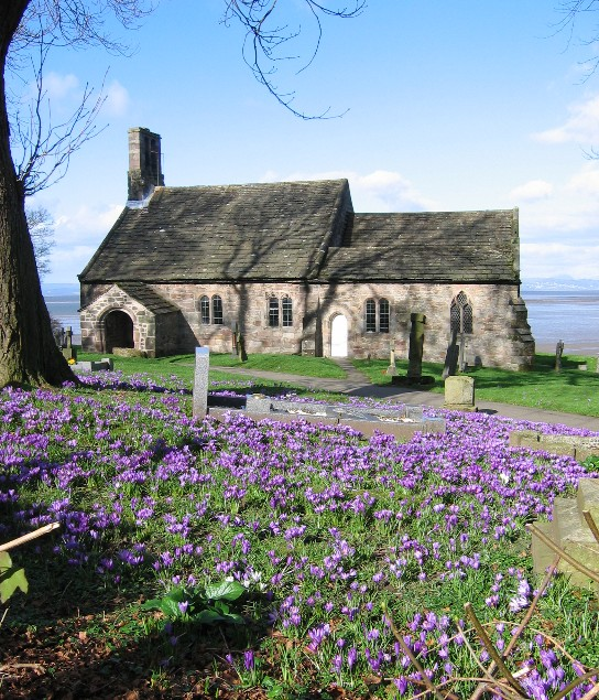 Crocuses at St. Peter's church