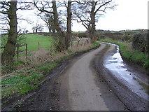 SJ9928 : Moorleys Lane' leading to Parkside Farm by Jack Barber