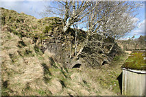 NS6829 : Old Lime Kiln by Bob Forrest