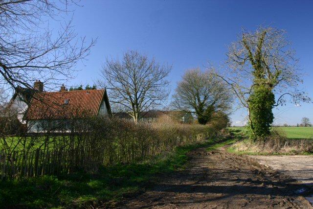 Mallows Lane, Garboldisham