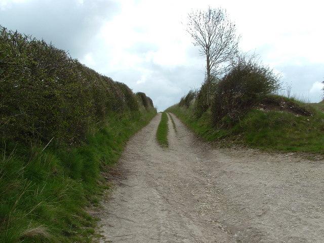 Farm track above Langtoft