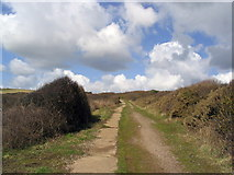 SY5088 : The path from Cogden Beach by Stephen Williams