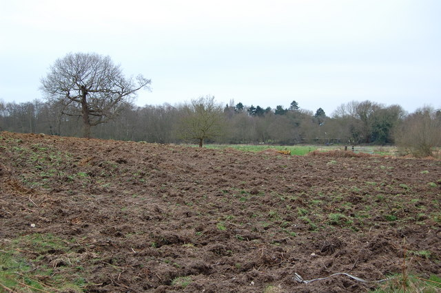 Field near Aldringham
