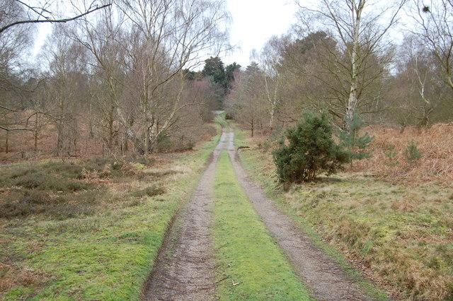 Track near Aldringham