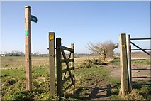 TM0576 : Lizzie's Lane, Redgrave by Charles Greenhough
