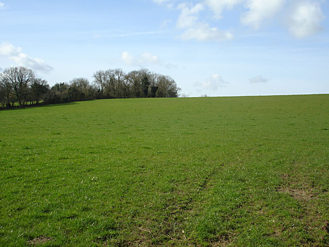 Field opposite Gloucester Road Farm