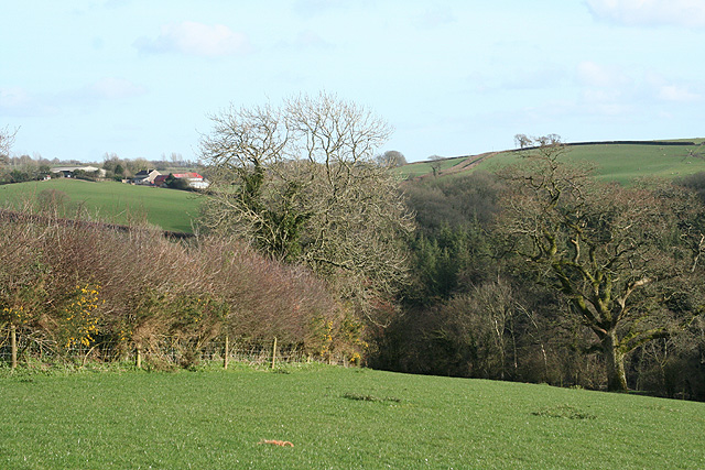 East Worlington: the Dalch valley