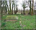 SJ5937 : Cemetery south of Ightfield by Espresso Addict