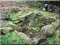 SH2429 : Ffynnon Saint by Gerallt Pennant