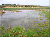 TQ9018 : Flooded Field, Brede Level by Simon Carey