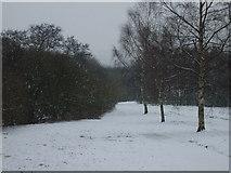 SO9194 : Snowy Path by Gordon Griffiths