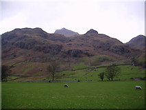 NY2906 : In Great Langdale by Michael Graham