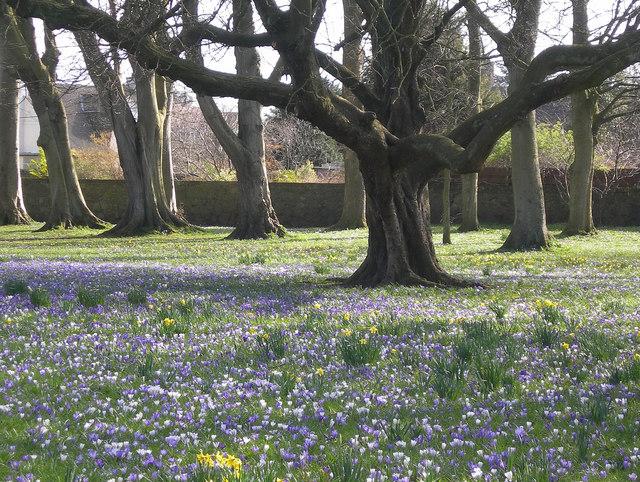 Corsehill Park