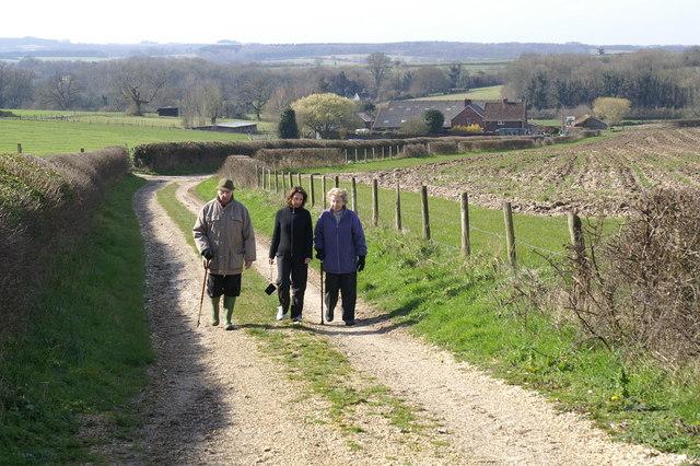 Lane to Fobdown Farm