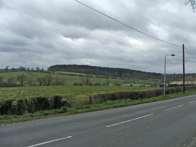 Hog Hill from Hadley Road, Enfield by Christine Matthews