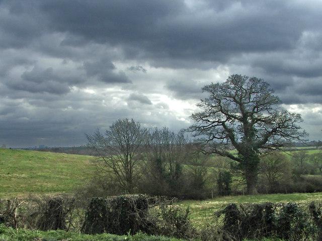 Farmland south of Hadley Road, Enfield by Christine Matthews