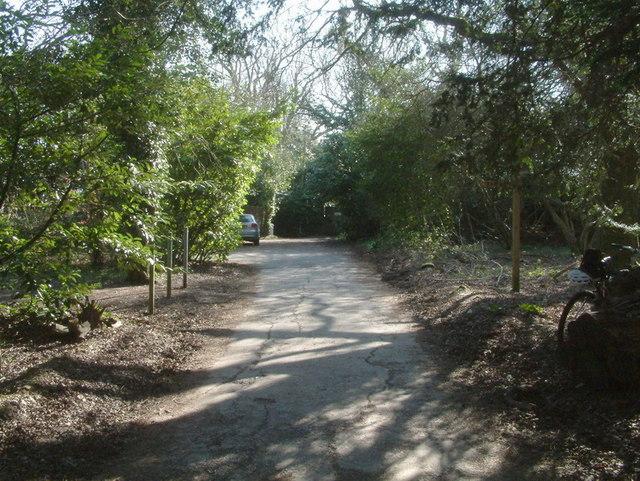 North Downs Way at Juniper Hill