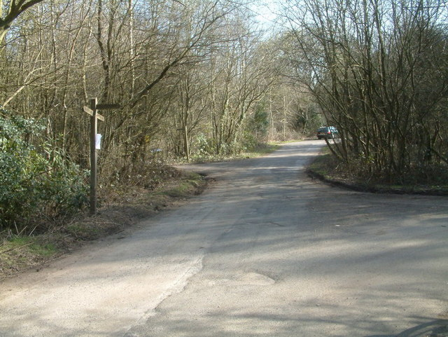 Junction at Merrywood Grove