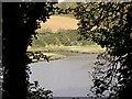 SX3854 : Wacker Lake by Tony Atkin