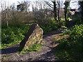 SX9265 : Stone in Millennium Green, St Marychurch by Derek Harper