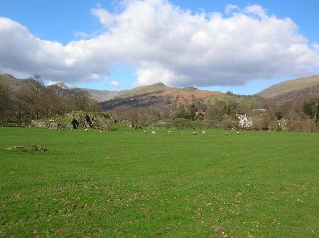 Field near Ambleside