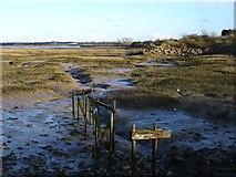 TQ8068 : Saltmarsh near slipway by Penny Mayes