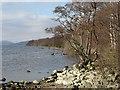 NN6359 : Loch Rannoch by Richard Webb