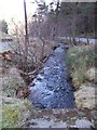 NO3697 : Ballater Burn flowing towards the Dee by Stanley Howe