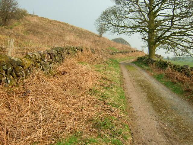 Blakelow Lane