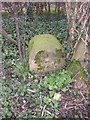 SE2646 : Boundary stone, Castley Lane, Castley by Humphrey Bolton