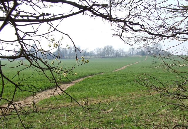 Public Footpath near Tuckhill, Shropshire