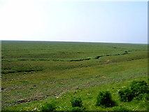 TF4548 : Salt marsh by Andrew Fielding
